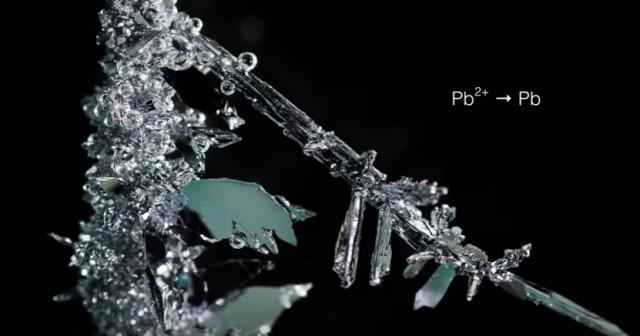 Рождение кристалла: таймлапс о том, как в химических растворах формируются металлические кристаллы
