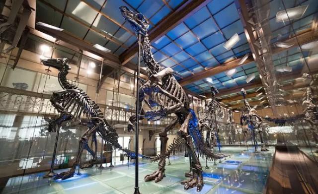 Проект Google Arts & Culture: онлайн-экскурсии по 50 музеям мира