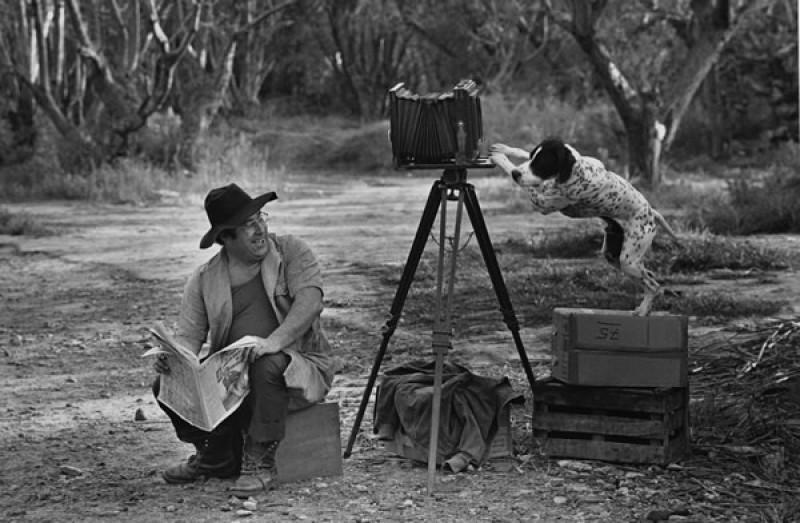 Чёрно-белое вдохновение - 100 кадров от мастеров фотографии