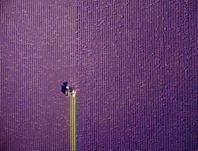 Победители фотоконкурса Drone Photography Contest 2017