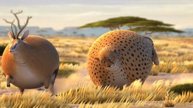 Если бы все животные планеты стали круглыми - 7 видеороликов