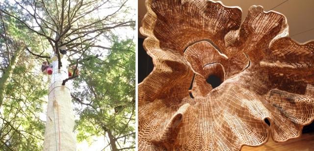 Гигантская скульптура 140-летнего дерева