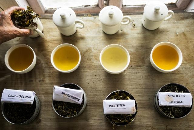 Фоторепортаж: как создают самый дорогой чай в Индии