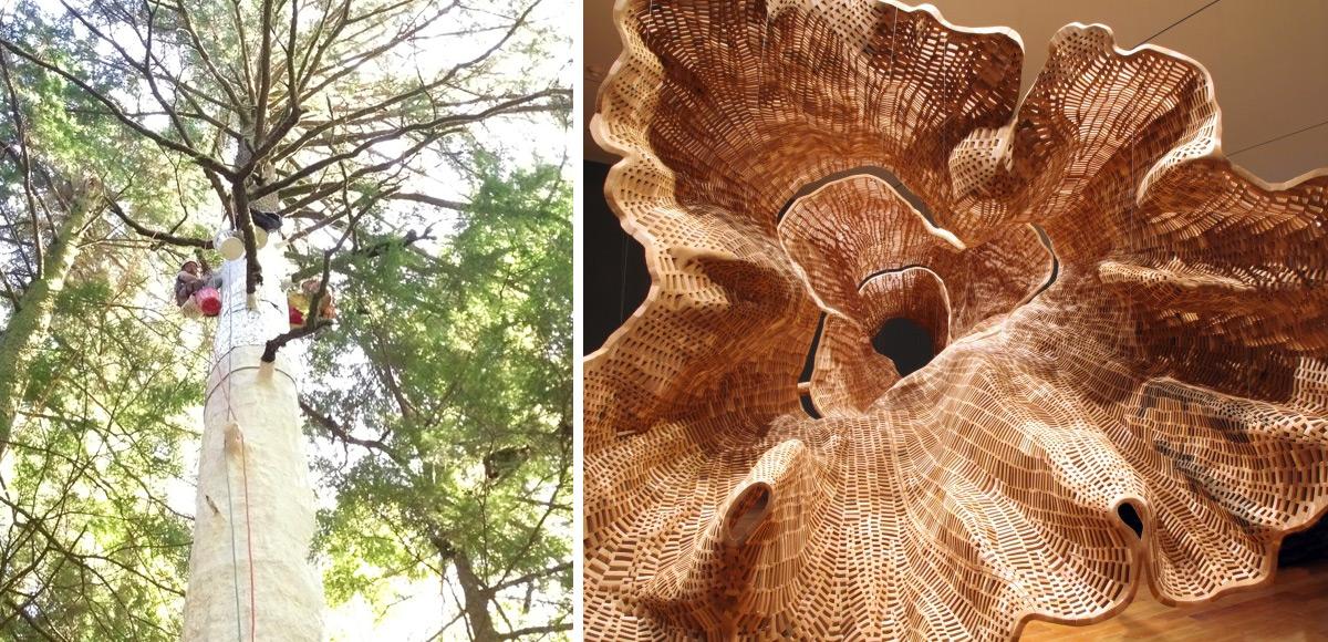 Гигантская скульптура 140-летнего дерева-4