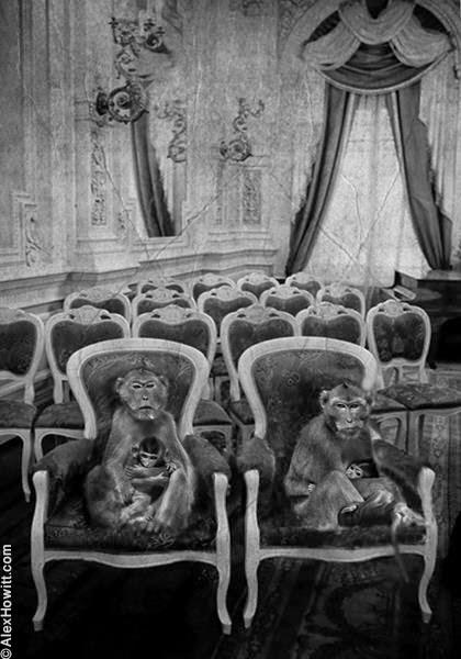 Чёрно-белые художественные фотографии Алекса Хоуита