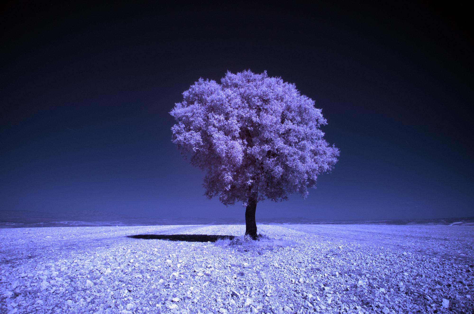 Как превратить пейзажное фото в сюрреалистическое инфракрасное изображение - 5a