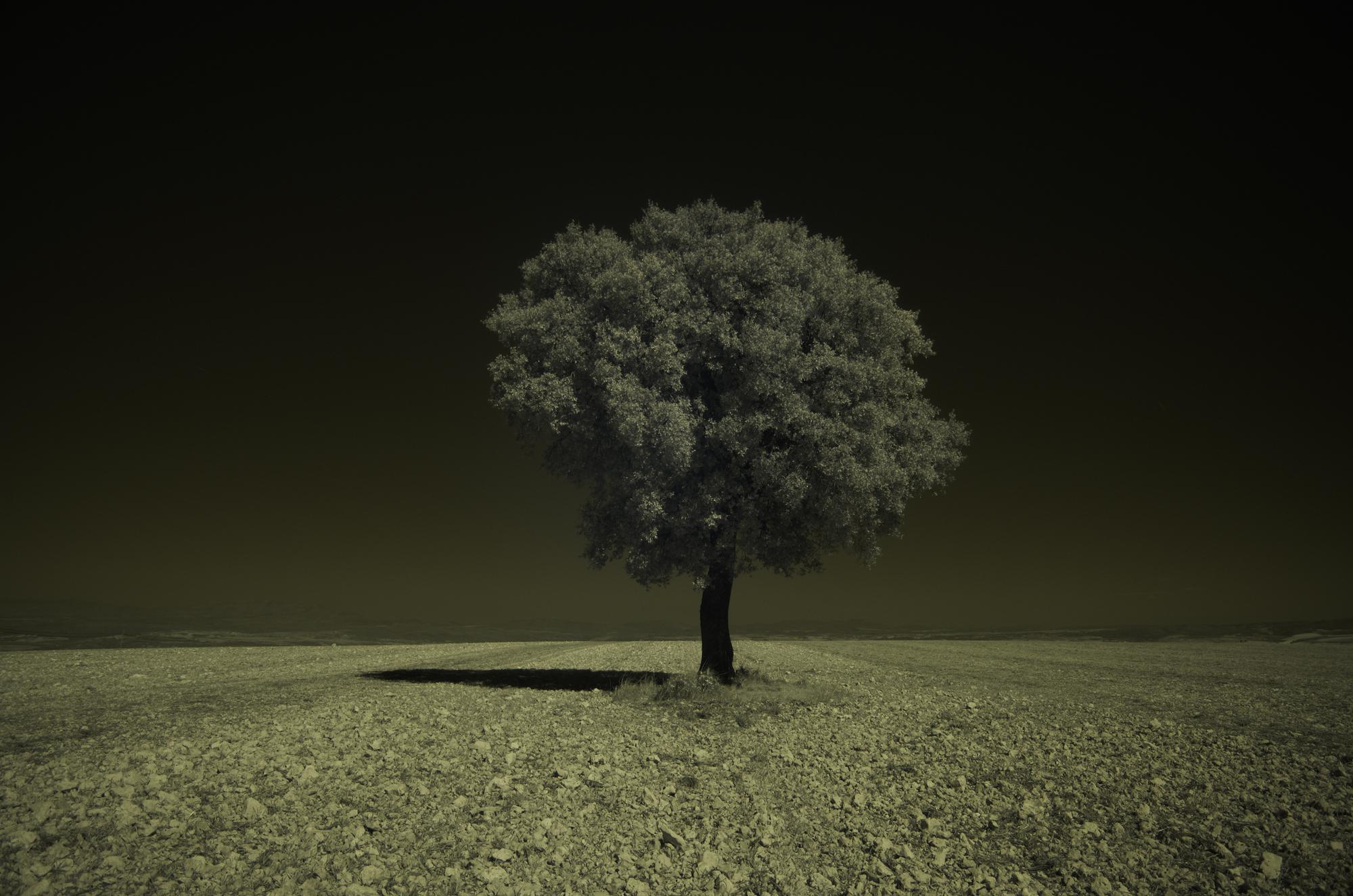Как превратить пейзажное фото в сюрреалистическое инфракрасное изображение - 3a