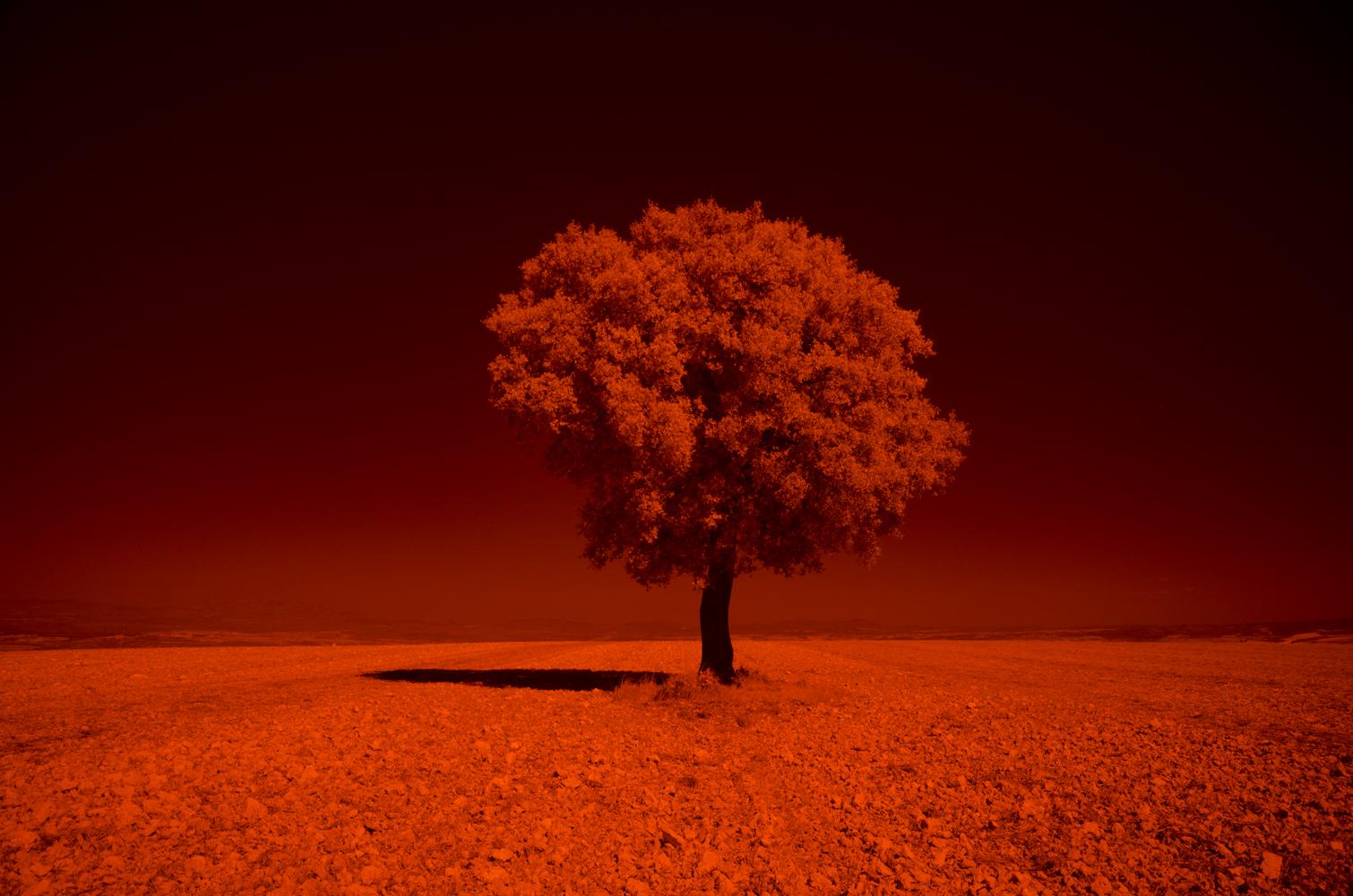 Как превратить пейзажное фото в сюрреалистическое инфракрасное изображение - 2