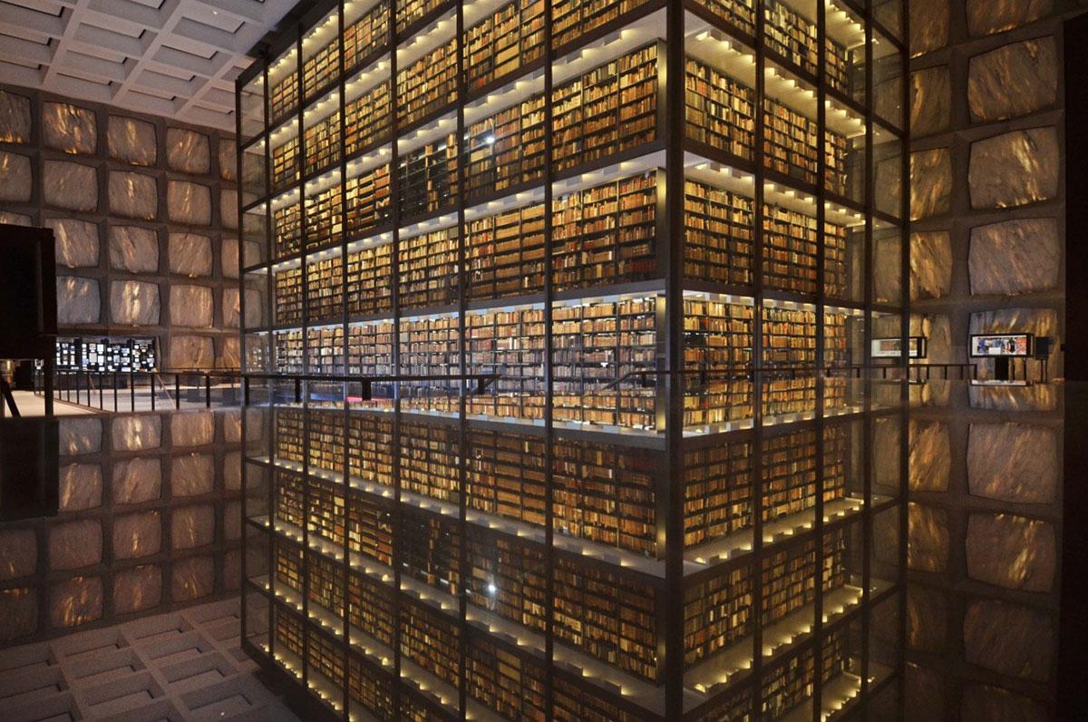 magnifique-bibliotheque-10