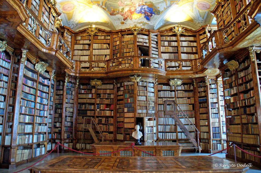 magnifique-bibliotheque-6