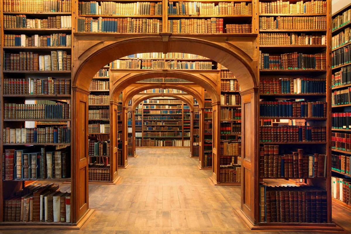 magnifique-bibliotheque-18