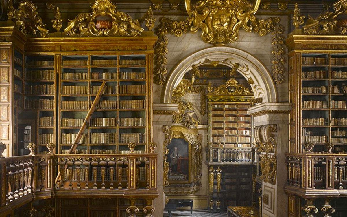 magnifique-bibliotheque-14
