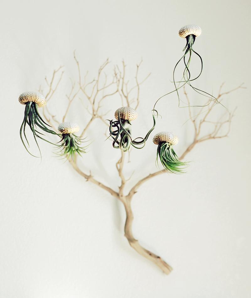 Воздушные медузы в креативных цветочных горшках - 4