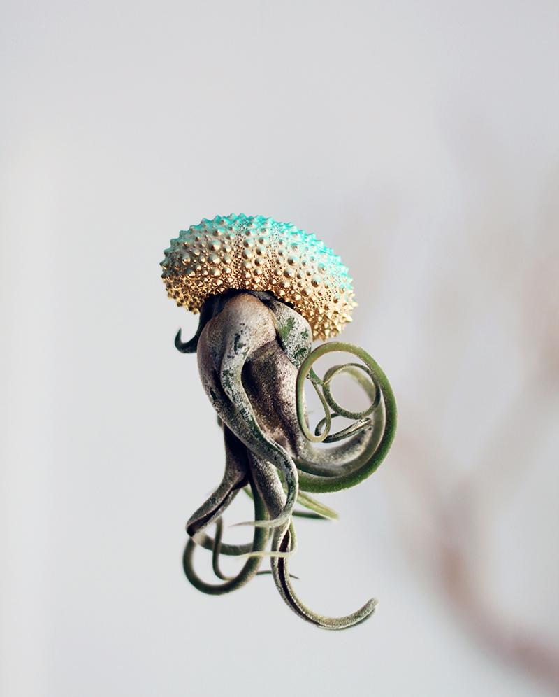 Воздушные медузы в креативных цветочных горшках - 2