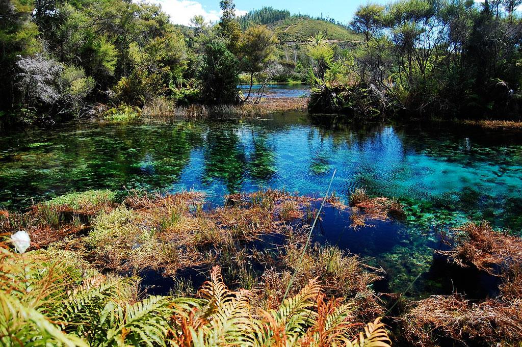 Озеро Пупу Спрингс, Новая Зеландия