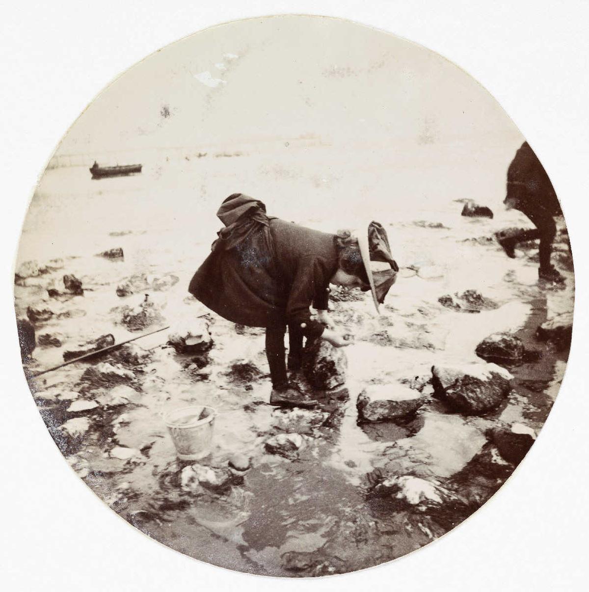 pervye snimki s fotokamery Kodak 9