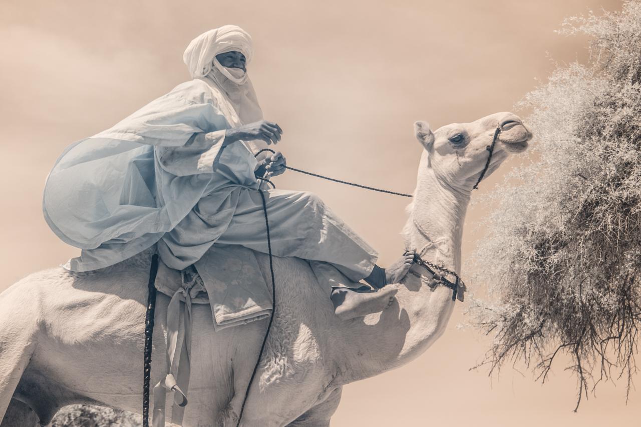 Кочевые племена Нигера в инфракрасных фотографиях Терри Голд-5