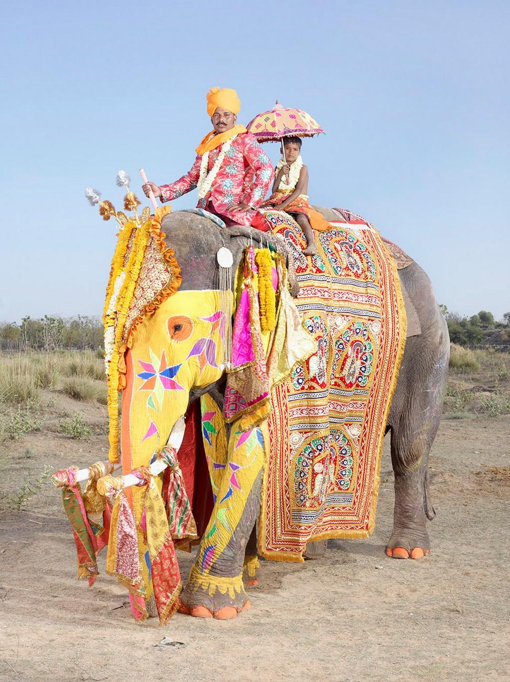 raspisnye slony 1