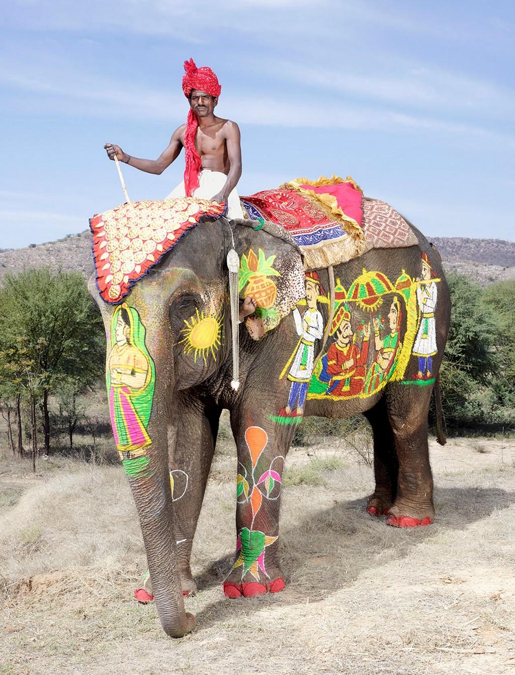 raspisnye slony 7