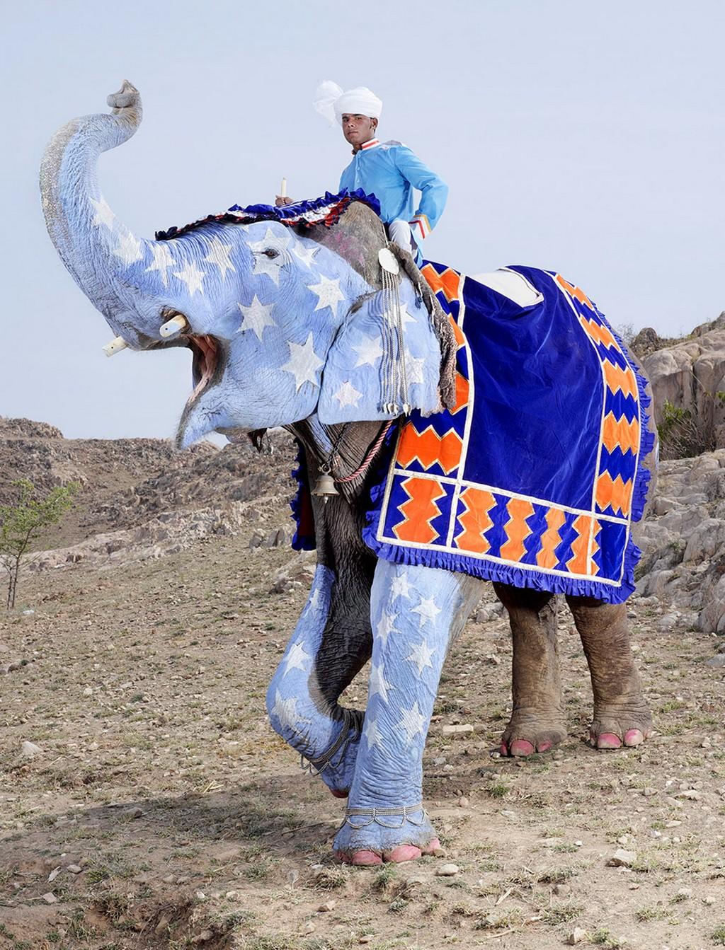 raspisnye slony 9