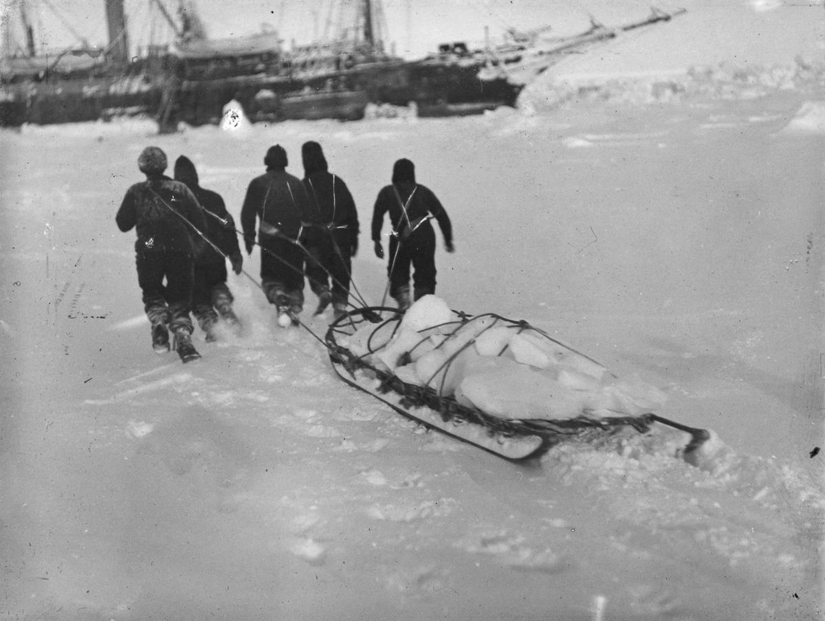 Fotografii Imperskoy transantarkticheskoy ekspeditsiey 31