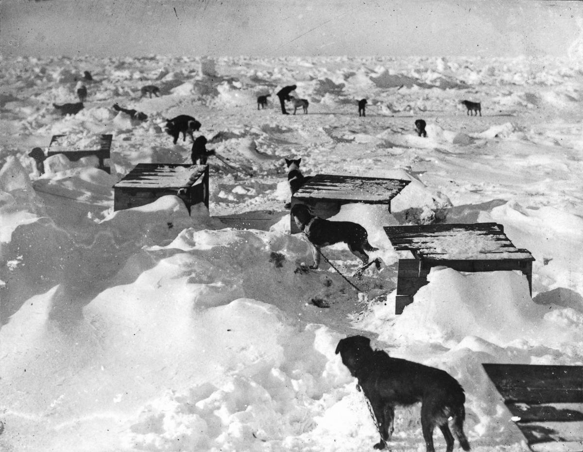 Fotografii Imperskoy transantarkticheskoy ekspeditsiey 32