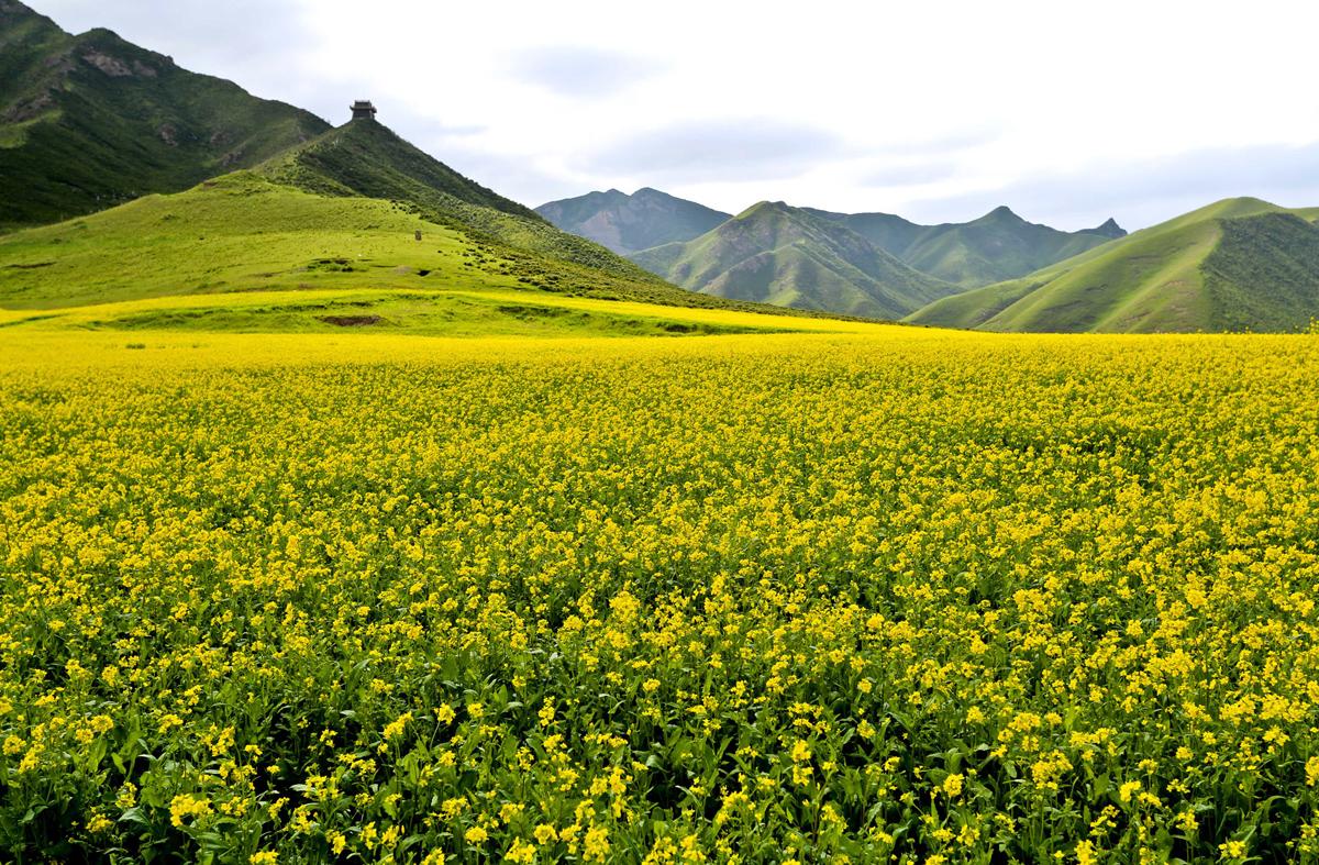Peyzazhnye fotografii Gansu Kitay 3