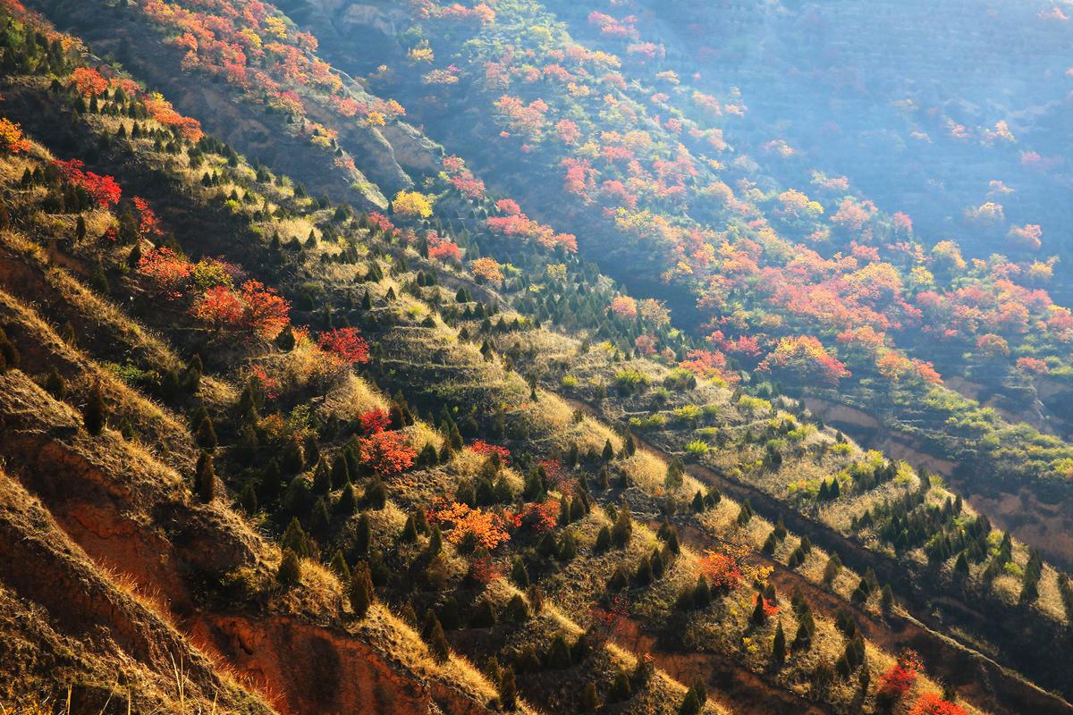 Peyzazhnye fotografii Gansu Kitay 9
