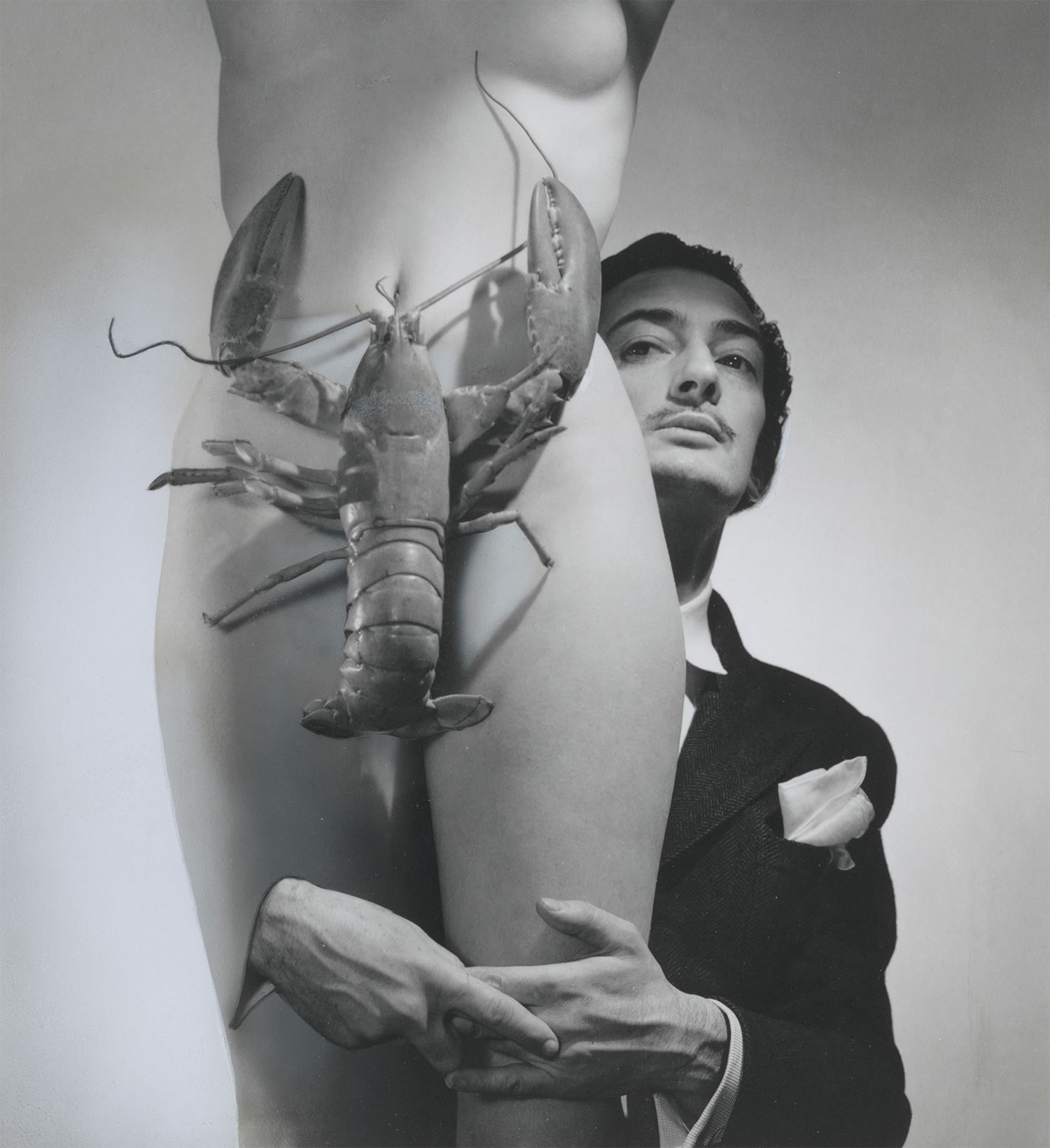 http://cameralabs.org/media/lab15/post/11-15/17/kartiny-i-fobii-Salvadora-Dali_3.jpg