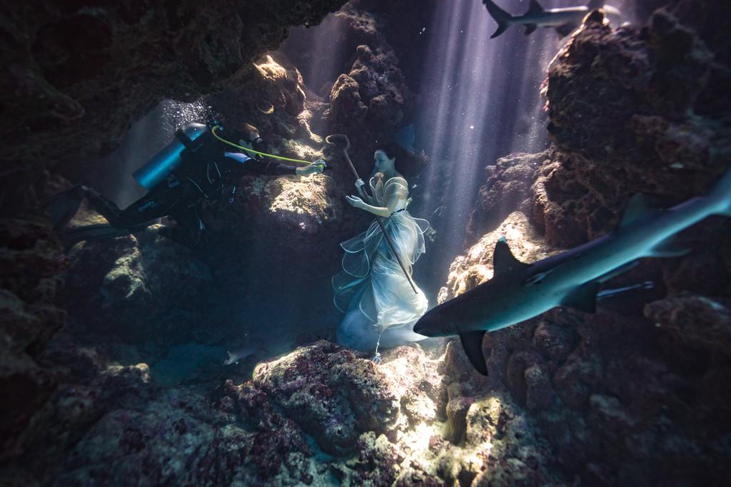 podvodnye portrety s akulami fotograf Bendzhamin fon Vong 2