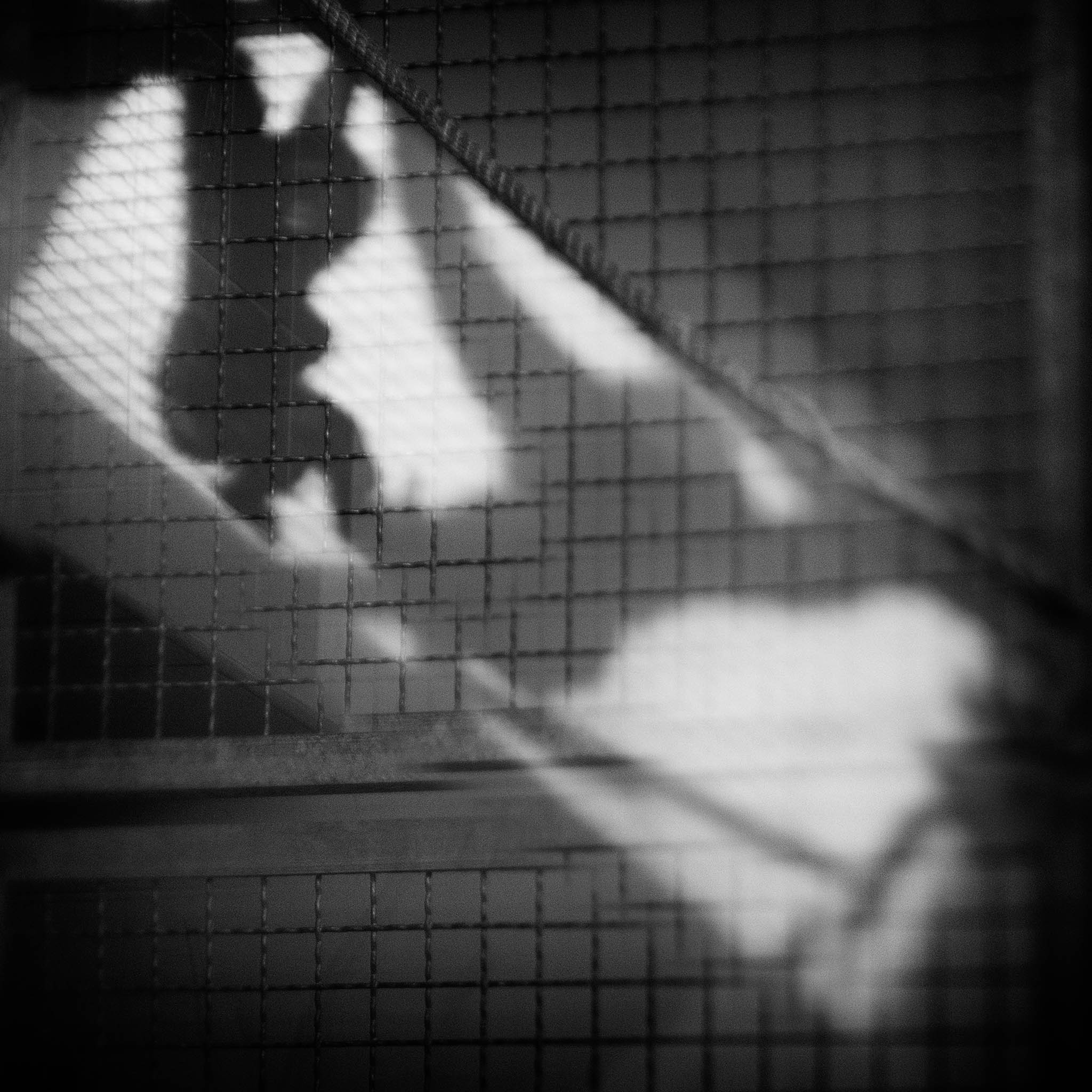 Fotograf Enn Berri 4