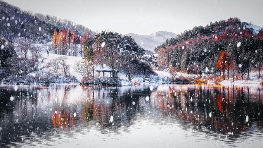 luchshie fotografii prirody 10