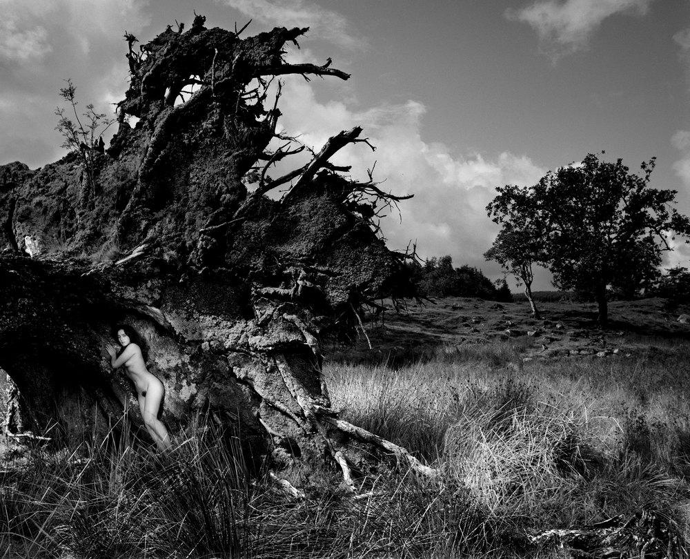 Джон Суоннелл – официальный фотограф королевской семьи и мастер ню фотографии - 25