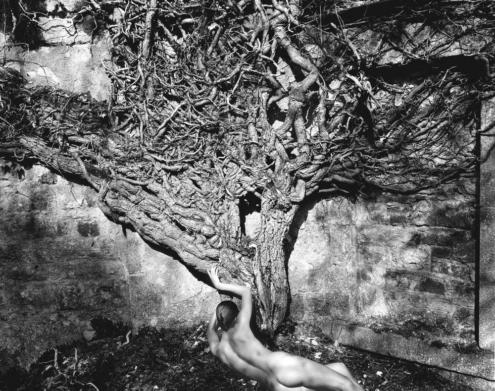 Джон Суоннелл – официальный фотограф королевской семьи и мастер ню фотографии - 39