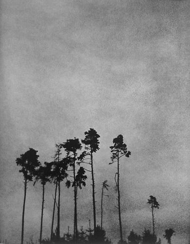 fotograf Edvard Dimsdeyl 13