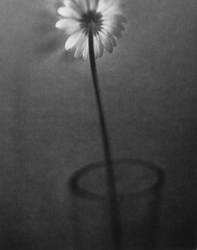 fotograf Edvard Dimsdeyl 20