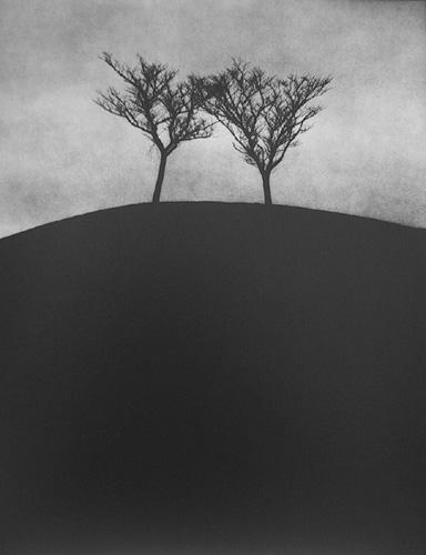 fotograf Edvard Dimsdeyl 31