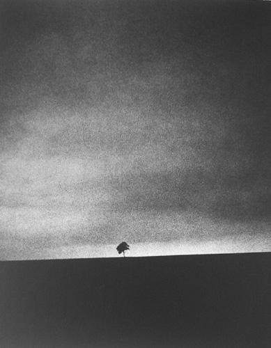 fotograf Edvard Dimsdeyl 33