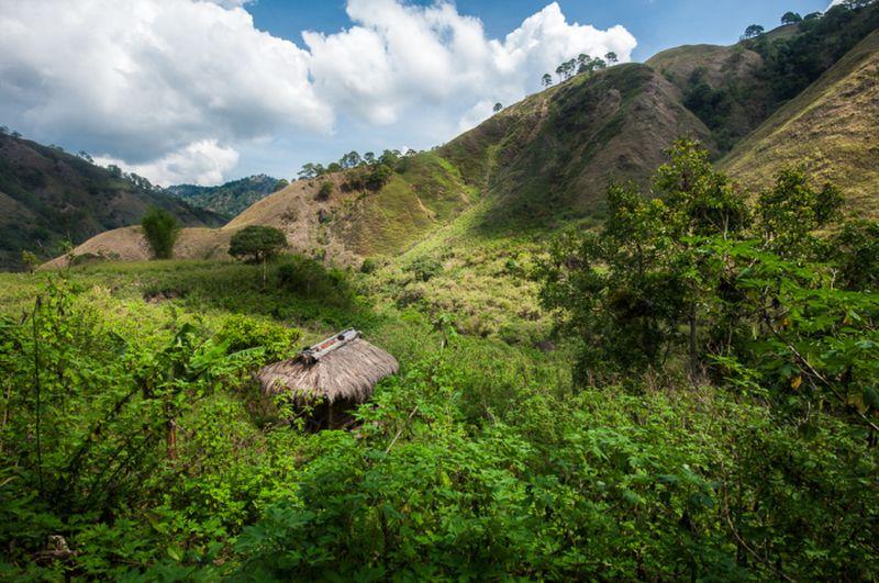 Igoroty gornye plemena 19