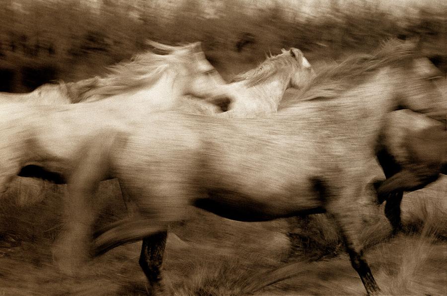 fotograf Robert Farber 1 30