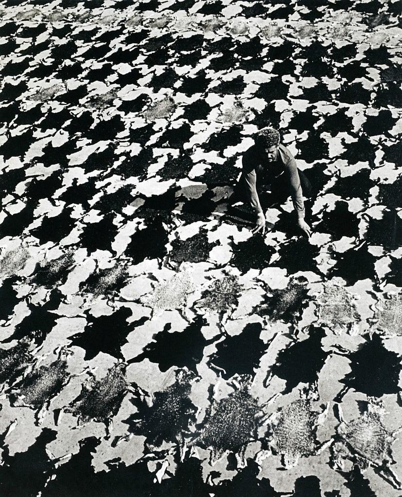 Советская история в фотографиях легендарного Дмитрия Бальтерманца 1 47