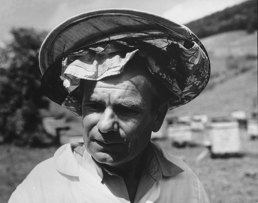 Советская история в фотографиях легендарного Дмитрия Бальтерманца 1 58
