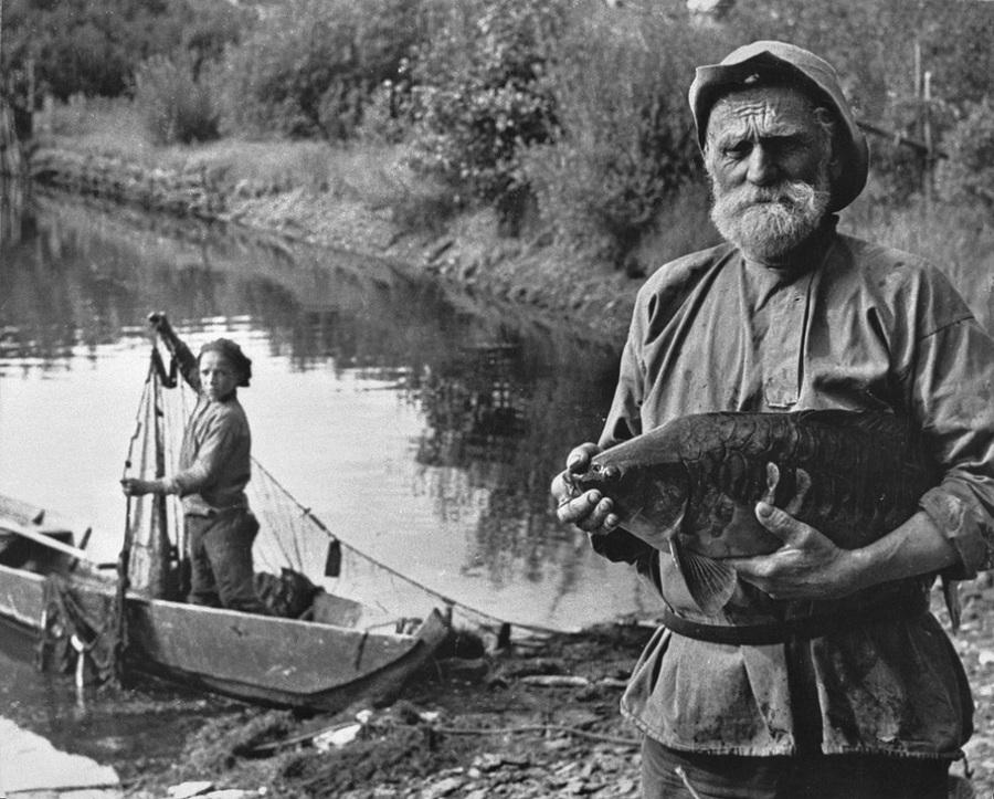 Советская история в фотографиях легендарного Дмитрия Бальтерманца 1 59