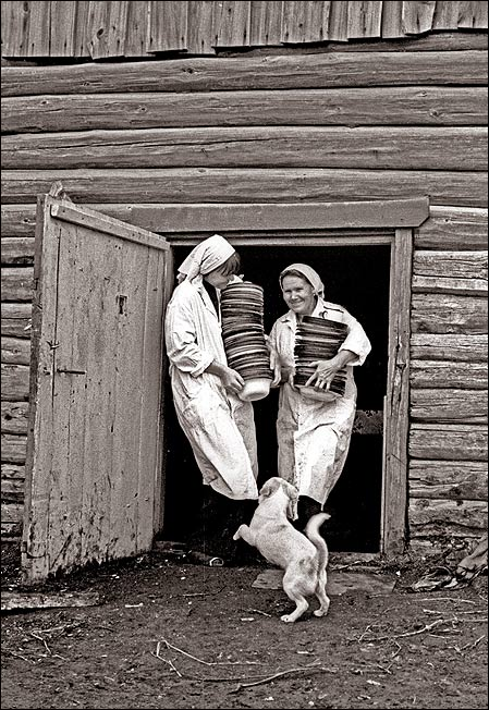 Фотограф Владимир Ролов 111