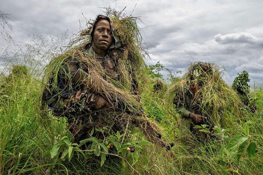 50 лучших фотографий года от National Geographic 16