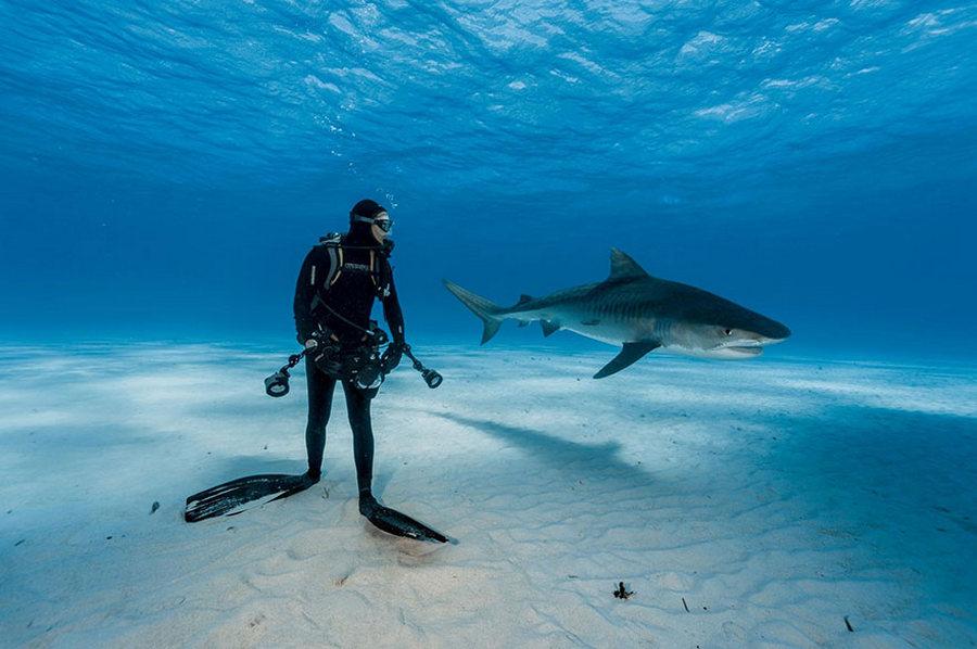 50 лучших фотографий года от National Geographic 2