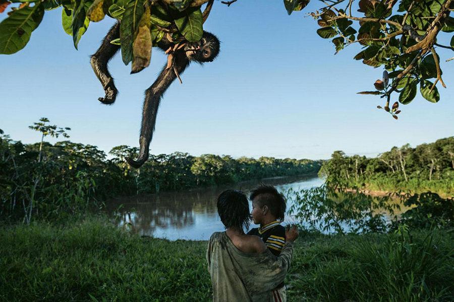 50 лучших фотографий года от National Geographic 28