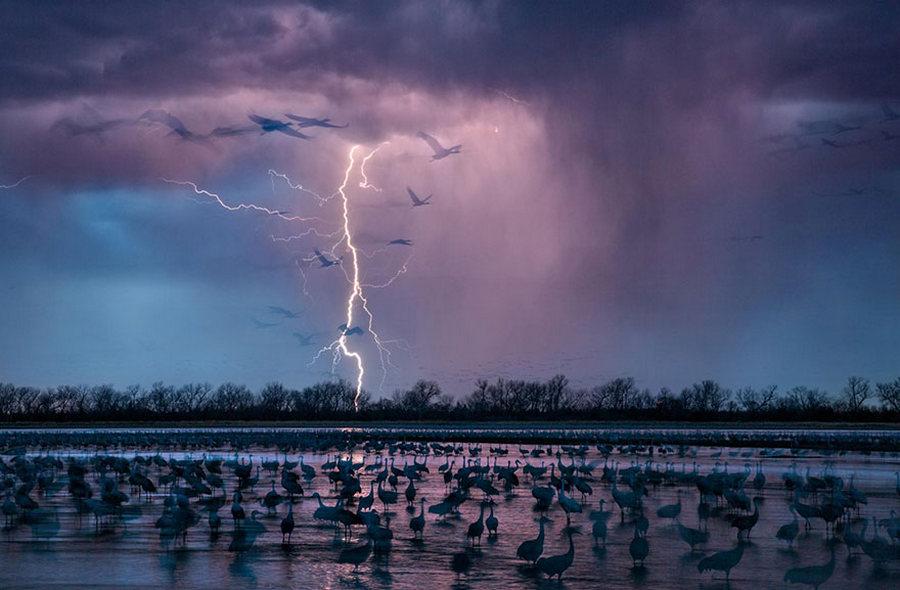 50 лучших фотографий года от National Geographic 1