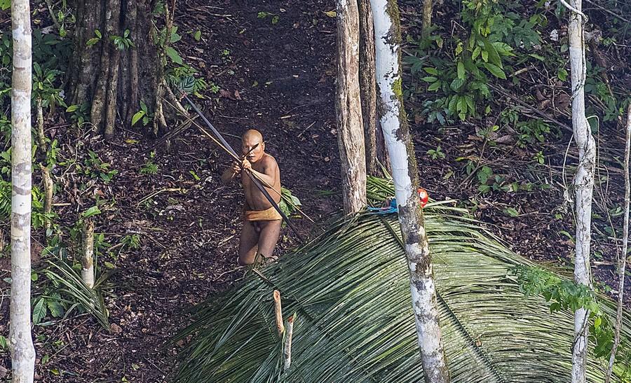 Неизвестное племя в джунглях Амазонии 6