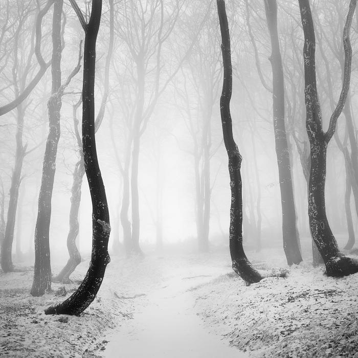 Пейзажные фотографии Даниел Жежиха 12